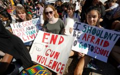 Gun Violence in Our Schools; How Do We Stop It?